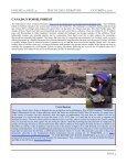 pdf version - Way of Life Literature - Page 4