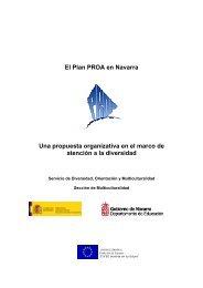 El Plan PROA en Navarra Una propuesta organizativa en el marco ...