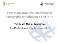 Case study from the International Partnership on Mitigation and MRV