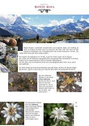 Details - Seiler Hotels Zermatt
