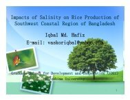 Impacts of Salinity on Rice Production of Southwest Coastal Region ...