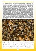 honigbienen und imkerei in niedersachsen - Niedersächsisches ... - Seite 5