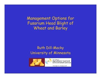 Management Options for Fusarium Head Blight of Wheat and Barley