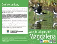 Aves de la laguna de - Comisión Estatal del Agua de Jalisco