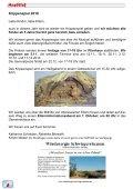 1 mal Kindergottesdienst live - Schwiegershausen - Seite 6