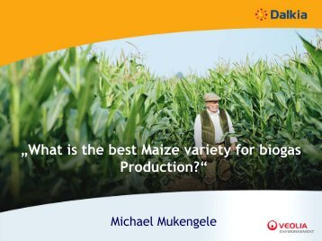 """""""What is the best Maize variety for biogas Production?"""""""