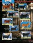 KB Cattle Company - MCS Auction, LLC - Page 2