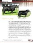 KB Cattle Company - MCS Auction, LLC - Page 6