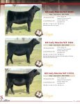 KB Cattle Company - MCS Auction, LLC - Page 7
