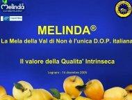 PDF (Melinda - il valore della qualità intrinseca) - Accesso alla base ...