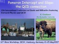 Blois Workshop, DESY, Hamburg, Germany 21-25 May 2007