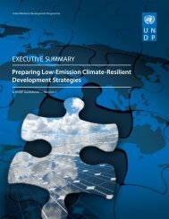 Preparing Low-Emission Climate-Resilient Development Strategies ...