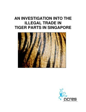 an investigation into the illegal trade in tiger parts in singapore