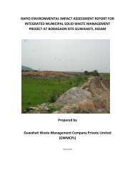 Rapid environmental impact assessment report for integrated