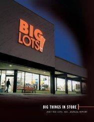 13399 cover - Big Lots