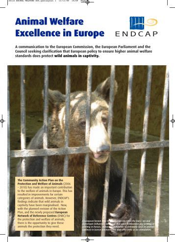 Animal Welfare Excellence in Europe - Whale and Dolphin ...