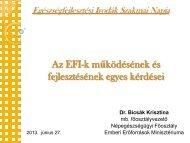 Az EFI-k működésének és fejlesztésének egyes kérdései - Országos ...