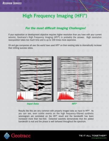 RESERVOIR SERVICES High Frequency Imaging (HFI®) - Net Brains