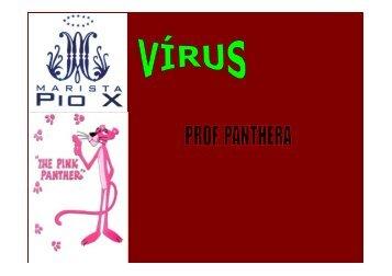 aula virus 1