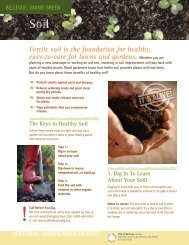 Fertile soil is the foundation for healthy, easy-to ... - City of Bellevue