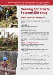 Flygblad: Varning för arbete i stormfälld skog - Säker Skog