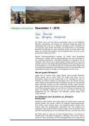 Ethiopian Enterprises Newsletter 2010 I