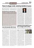 il periodico di novembre 2011 - Protezione Civile della Provincia di ... - Page 7