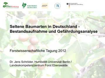 Seltene Baumarten in Deutschland - Forstwissenschaftliche Tagung ...