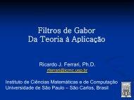 Filtros de Gabor Da Teoria à Aplicação - USP