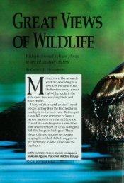 618 Great Views of Wildlife - webapps8