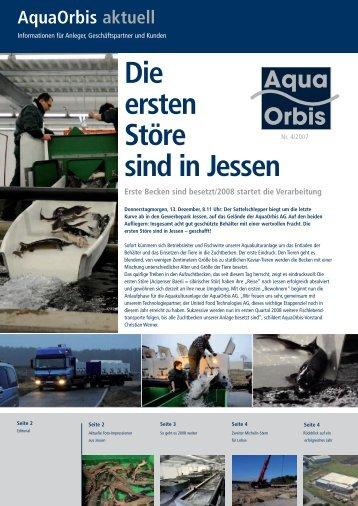 Die ersten Störe sind in Jessen - bei AquaOrbis