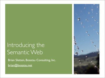 Introducing the Semantic Web - Bosatsu Consulting