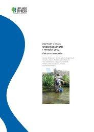 rapport 2010/3 undersökningar i fyrisån 2010 fisk och stormusslor