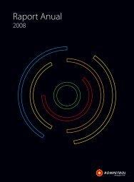 2008 Raport Anual - Rompetrol.com