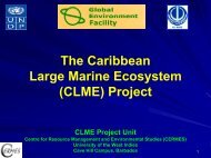 The Caribbean LME Project - Large Marine Ecosystems of the World