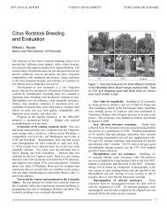 2007 Michael L Roose (Rootstock Breeding and Evaluation) - Citrus ...