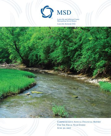 Comprehensive Annual Financial Report 2007 - MSD