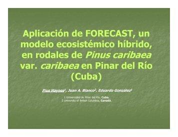 Aplicación de FORECAST, un modelo ecosistémico híbrido, en ...