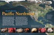 Pacific Northwest - X-Ray Magazine