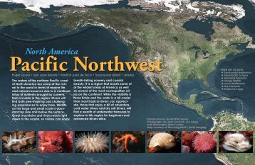 Pacific Northwest - X-Ray Magazine