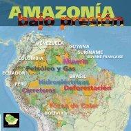 Amazonía bajo presión - RAISG - Instituto Socioambiental