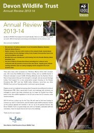 DWT_Annual_review_13-14