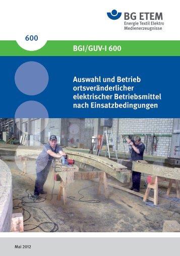 BGI 600 - BGV A3