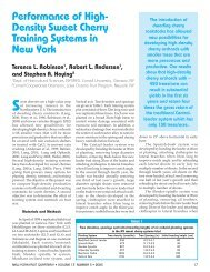 High-Density Sweet Cherry Training Systems in NY