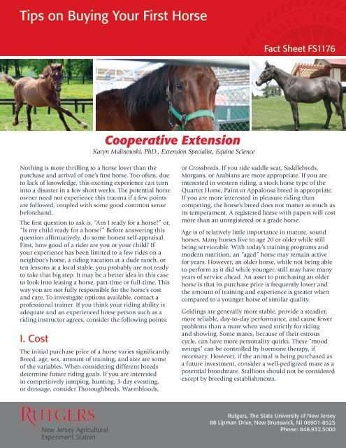 Tips on Buying Your First Horse - Rutgers Equine Science Center