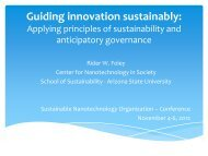 Applying principles of sustainability and anticipatory governance