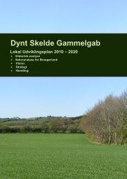 Dynt Skelde Gammelgab udviklingsplan - Sønderborg kommune på ...