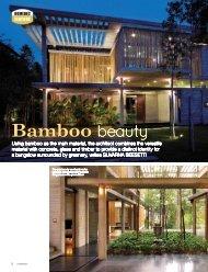 Bamboo beauty