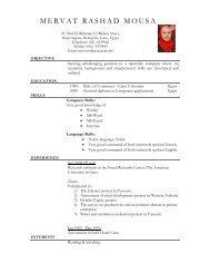 Elegant Resume - The American University in Cairo