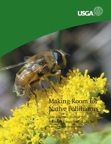 Making Room for Native Pollinators